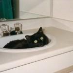Kayla in sink